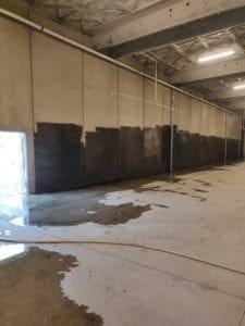 skimmelsvamp i betonhal
